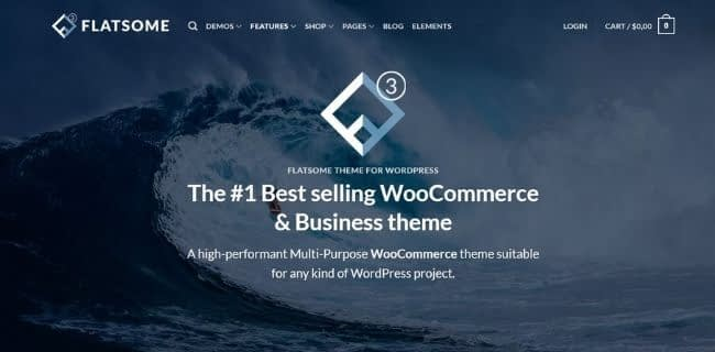 best Ecommerce WordPress themes for your online store 2020